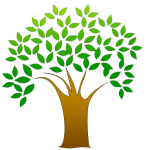 San Carlos Genealogy has Launched